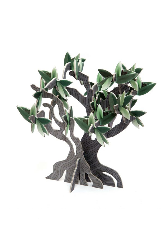 olive senior the tree of life The rio grande valley boasts two species of olive trees one is native to texas  and the other has been adapted to our native footprint.